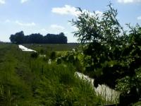 Graben zwischen Garten- und Kuhfenne Juni 2014