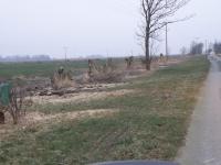 Wegbegleitender Graben an der Bootfahrt, Bäume werden entfernt