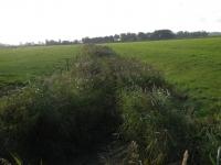 Mittelgraben 1 im Osterkoog vor den Arbeiten (1)