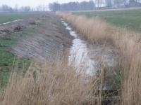 Mittelgraben 1 im Osterkoog während der Arbeiten (2)